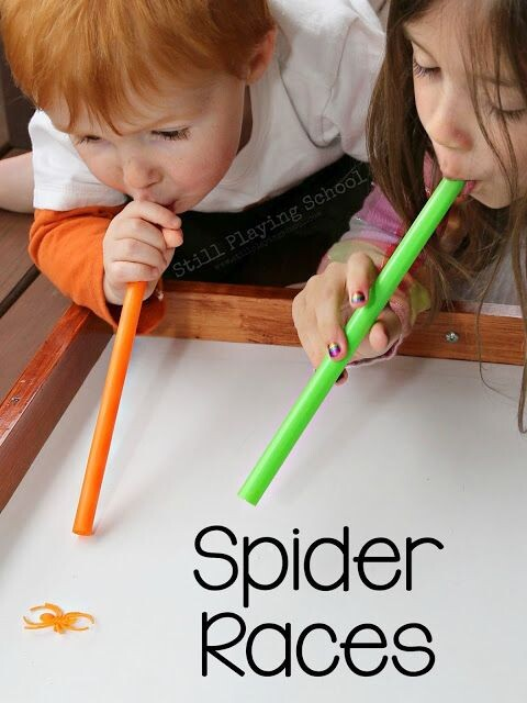 corrida de aranha